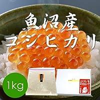 無洗米 魚沼産コシヒカリ 1kg