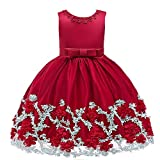 Chyuanhua Mädchen Abendkleid Neujahrskleidung, Kinderbekleidung, Weihnachten Prinzessin Kleid, Mädchenbekleidung, Kinderbekleidung Mädchen-Geburtstags-Party-Kleid (Farbe : Rot, Größe : 120cm)