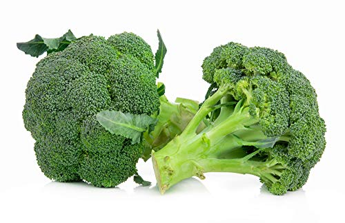 Broccoli Seeds (Waltham 29), 300 Heirloom Seeds Per Packet, Non GMO Seeds