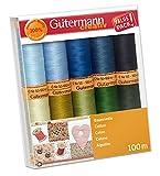 Gutermann - Juego de Hilos de algodón 100% Natural, 100 m a Mano y máquina, 10 Azules * Verdes.