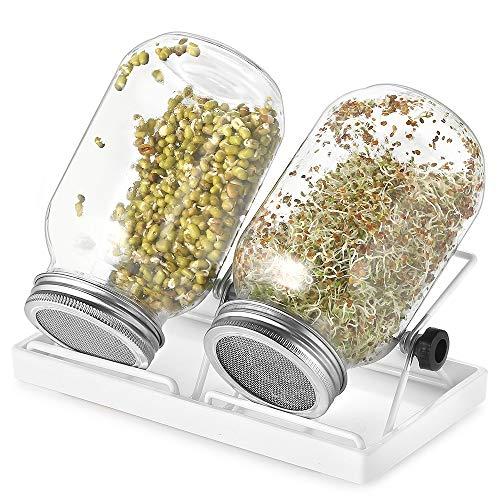 ecooe Juego de 2 tarros de cristal germinado para brotes de cristal, con 1 recipiente para agua, 2 cubiertas de rejilla de filtro de acero inoxidable 304 y 2 soportes