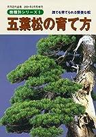 五葉松の育て方 樹種別シリーズ1