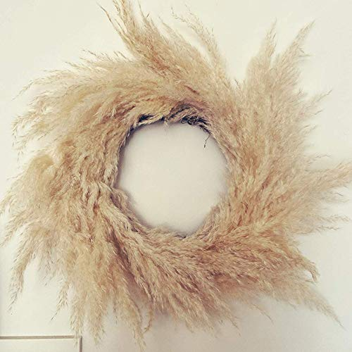 CHENSTAR Dried Pampas Grass Wreath, Natural South American Prairie Wreath Hand-made Dried Flowers Garland Decor Home Shopping Mall Decoration(Yellow or purple gray)