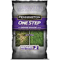 Pennington One Step Complete Dense Shade Bare Spot Grass Seed