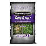Pennington One Step Complete Dense Shade Bare Spot Grass Seed, 10 Pounds, White