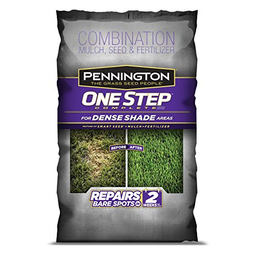 Pennington One Step Complete Dense Shade Bare Spot Grass Seed, 5 Pounds, White