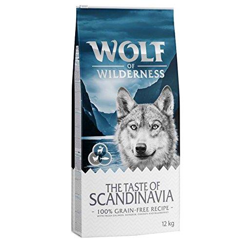 Wolf of Wilderness The Taste of Scandinavia Trockenfutter für ausgewachsene Hunde, mit frischem Lachs, Rentier und Huhn mit Heidelbeeren, 5 kg