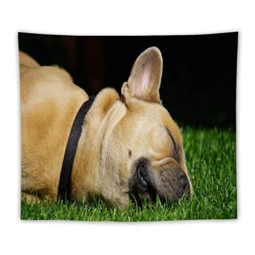 French Bulldog Wall Hangings Tapestries Wall Decoricnic Sheets Multipurpose Interior Decorcarves Creative Gifts Comfortable Personalised Soft Blankets 60' X 51'Inches
