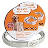 Hywean 2pack Collare Antipulci per Gatti, 100% di ingredienti Naturali, Trattamento e prevenzione delle pulci