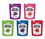 Wiley Wallaby Ultimate Fruit Variety Australian Licorice Snack Peak Gift Box (5 - 10 oz bags) – Red, Green Apple, Watermelon, Huckleberry, Blueberry Pomegranate