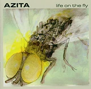 Life on the Fly by AZITA