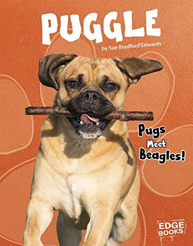 Puggle: Pugs Meet Beagles! (Top Hybrid Dogs)