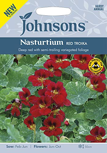 Johnsons Seeds Graines de Nasturtium Red Troika - 1