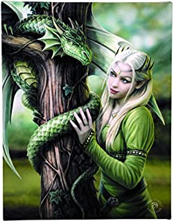 Enchanted Jewelry Kindred Spirits Canvas Art Print by Anne Stokes