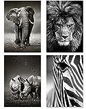 PICSonPAPER Poster 4er-Set Wildlife, ungerahmt DIN A4,