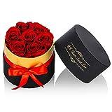 Nuptio Rosas Rojas Preservadas en Caja Flores Tamaño Pequeño Flores Reales Hechas Mano Pétalos Eternos, Regalos Románticos para Novia, Boda, Cumpleaños, Aniversario Navidad