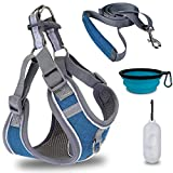 Earth Friendly Dog Harness Leash Set No Pull Step-in Harness Adjustable Padded Mesh Puppy Dog Harness with Garbage Dispenser Bowl Easy Put On & Take Off Vest Harness for Small Medium Breed Pets
