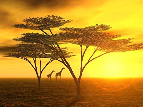 wandmotiv24 Fototapete Afrika Größe: 350 x 260 cm Wandbild, Motivtapete, Vlietapete KTk42