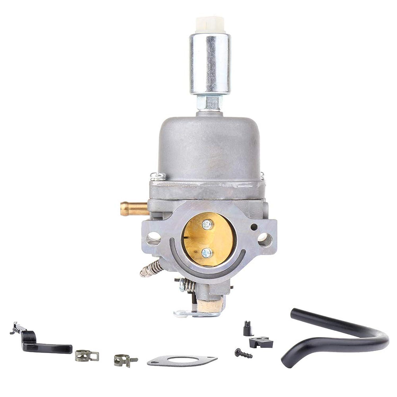 ECCPP New Carburetor Carb Fit for Briggs Stratton 799727 698620 791886 690194 499153 498061 Carb