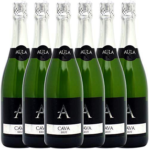 【ワインプレス】セットでお得!本格シャンパン製法!カヴァ6本セット((W0QL01SE))(750mlx6本セット(1種6本))