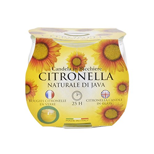 New Prices Citronella Garden Candle In A Glass Jar Approx 25hrs Burn Time