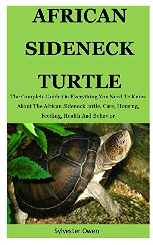 African sideneck turtles: The Complete Guide On Everything You Need To Know About The African Sideneck Turtle, Care, Housing, Feeding, Health And Behavior