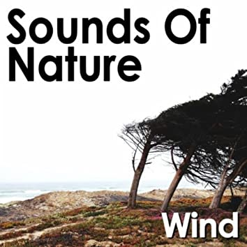 Sounds of Nature: Wind
