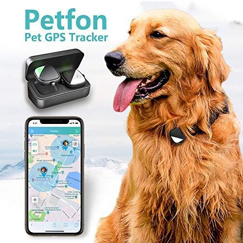 PETFON Rastreador GPS para Mascotas, Dispositivo de Posicionamiento en Tiempo Real, Sin Tarifa Mensual, Control de Aplicación para Perro Doméstico(Only for Dog)