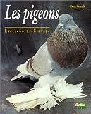 Les pigeons : races, soins, élevage