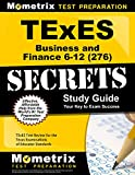 TExES Business and Finance 6-12 (276) Secrets Study Guide: TExES Test Review for the Texas Examinations of Educator Standards