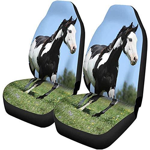 Beth-D Set van 2 autostoelhoezen Action Paint Horse Hengst dier mooie schoonheid zwart lichaam auto voorstoelbeschermer past