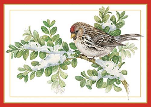 Caspari Boxed Christmas Cards, 4.25  x 6 , Sparrow on Snowy Branch (100105)