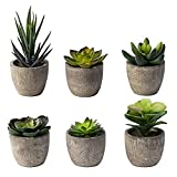 Small Artificial Succulents Plants Artificial Potted Fake Plant Decor Bedroom Aesthetic (6 Piece Faux Succulents in Pots 2.3') Fake Succulent Decor Fake Succulents Mini Succulents Desk Office Bulk