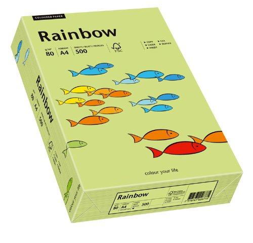 Papyrus 88042607 Drucker-/Kopierpapier bunt, Bastelpapier: Rainbow 80 g/m ² DIN-A4, 500 Blatt, matt, leuchtend grün