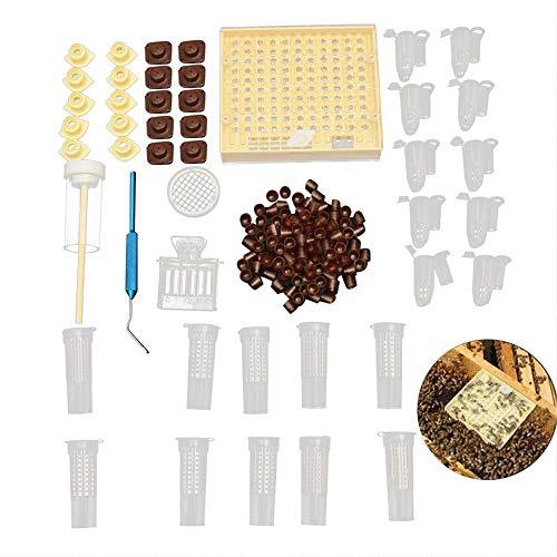 DIYARTS 155Pcs Sistema de Crianza Queen de Plástico Equipo Apicultura Queen Bee Criando Caja de Cultivo Vasos de Celdas Conjunto de Herramientas de Apicultura