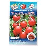 アマルフィの誘惑 パイオニハエコサイエンスの中玉トマト種です