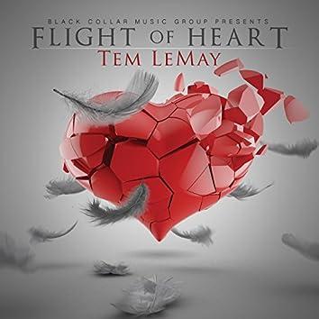 Flight of Heart