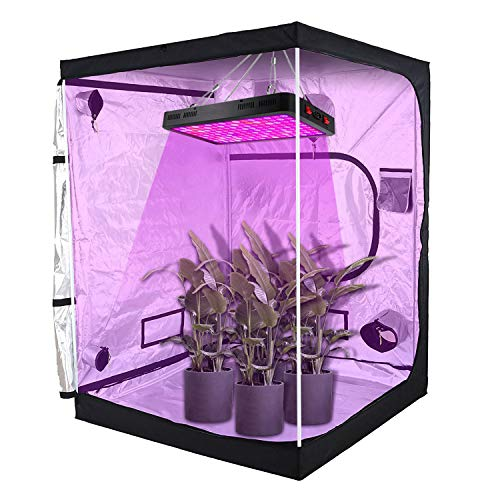 """VT 60""""x60""""x80"""" Reflective Mylar Hydroponic Grow Tent with Observation Window and Floor Tray for Indoor Plant Growing 5x5 (for 6 Plants)"""