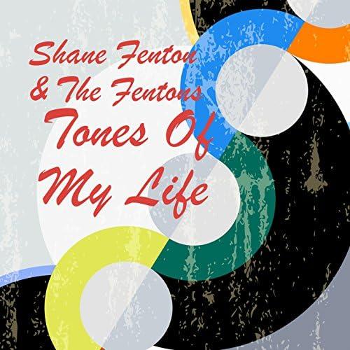 Shane Fenton And The Fentones, The Fentones