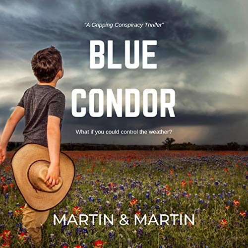 Blue Condor audiobook cover art