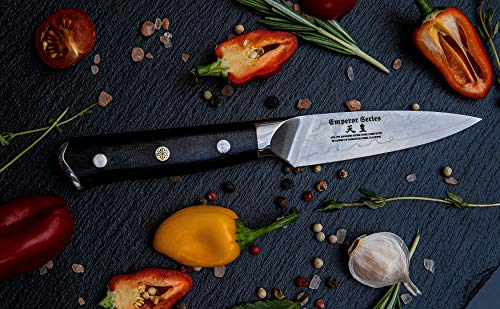 Paring (Petty) Knife 3.5 inch: Best Quality Japanese AUS10 Super Steel