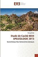Etude de Cavité BEES SPELEOLOGIE 2013