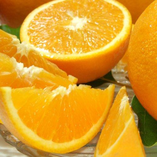 和歌山県産だから安心 武内さんちの バレンシアオレンジ ご家庭用 サイズ混合 5kg