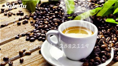 Coffea arabica Graines 10 Pcs grain de café Tropical Graines Bonsaï, vivace fruits caféier graines vertes alimentaires pour jardin 2