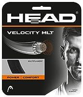 ヘッド(HEAD) 硬式テニス ガット VELOCITY MLT 12m 281404
