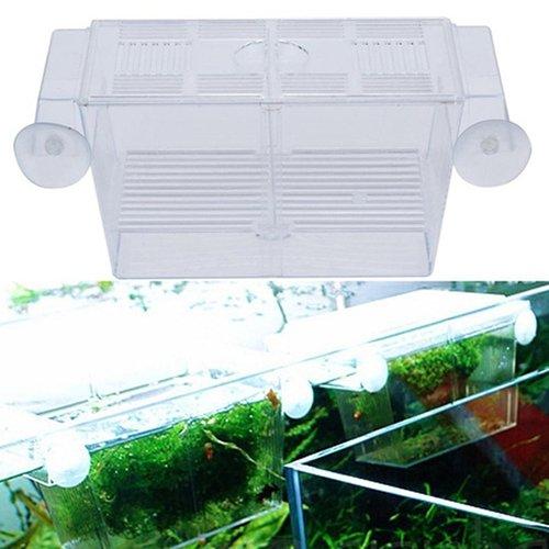 collectsound 1 unid caja de cría de peces acuario tanque de peces guppy doble criador crianza trampa caja criadero caja de aislamiento transparente