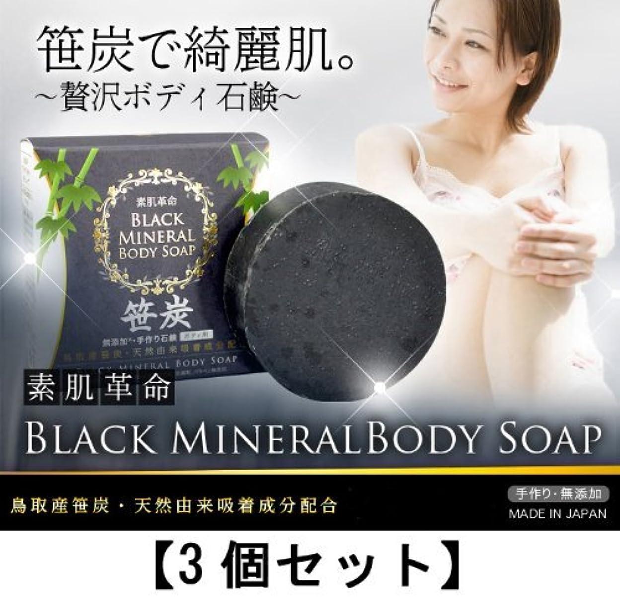 信頼できるたらいセッション素肌革命ブラックミネラルボディソープ 3個セット(天然笹炭配合無添加石鹸)