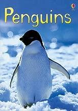 Penguins (Usborne Beginners)