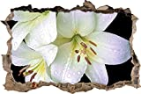 pixxp Blueprint 3D WD 5228_ 92x 62Dark orquídea Flores perforar Pared Adhesivo Pared en 3D, Vinilo, Negro/Blanco, 92x 62x 0,02cm