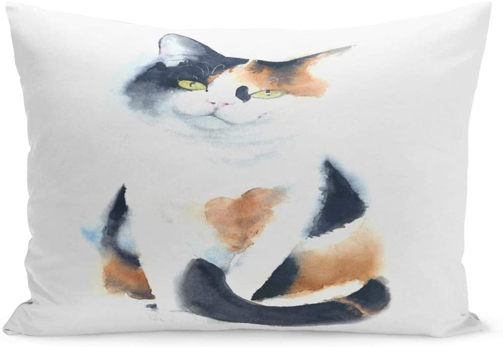 Amazon Com Semtomn Throw Pillow Covers Animal Cat Calico Breed Sitting Watercolor Painting Artistic Cute Drawing Pillow Case Cushion Cover Lumbar Pillowcase Decoration For Couch Sofa Bedding Car 20 X 30 Inchs Home